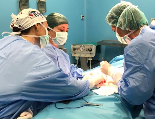 Chirurgia post bariatrica e obesità